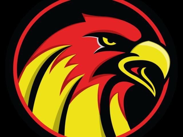 https://blackburnhawks.com/wp-content/uploads/2020/08/BHIHC-New-Logo-Alternate-640x480.png